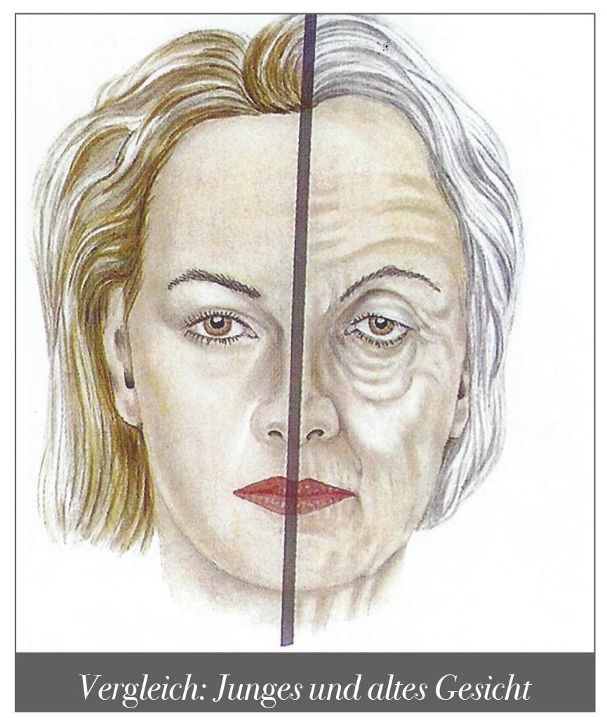 Vergleich Hautbild junges und altes Gesicht